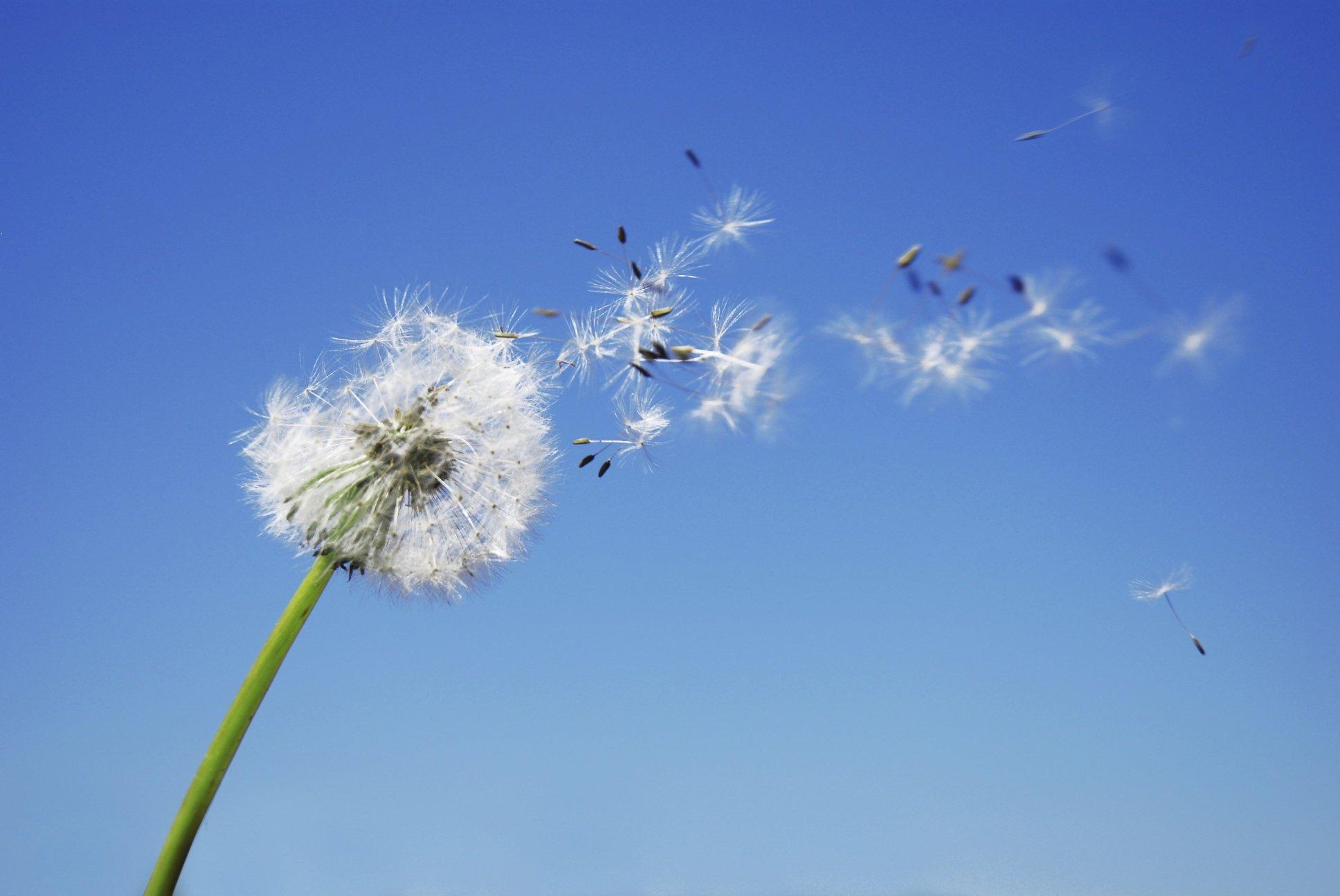 Frischer Wind für Ihre Kommunikation